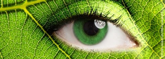 Eye in a green leaf; copyright: panthermedia.net/minervastock