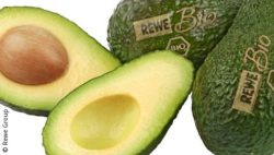 Photo: Avocados with natural branding; copyright: Rewe Group